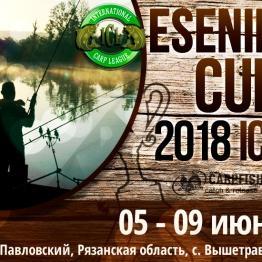 ESENIN CUP '18 — V этап ICL Masters 2018